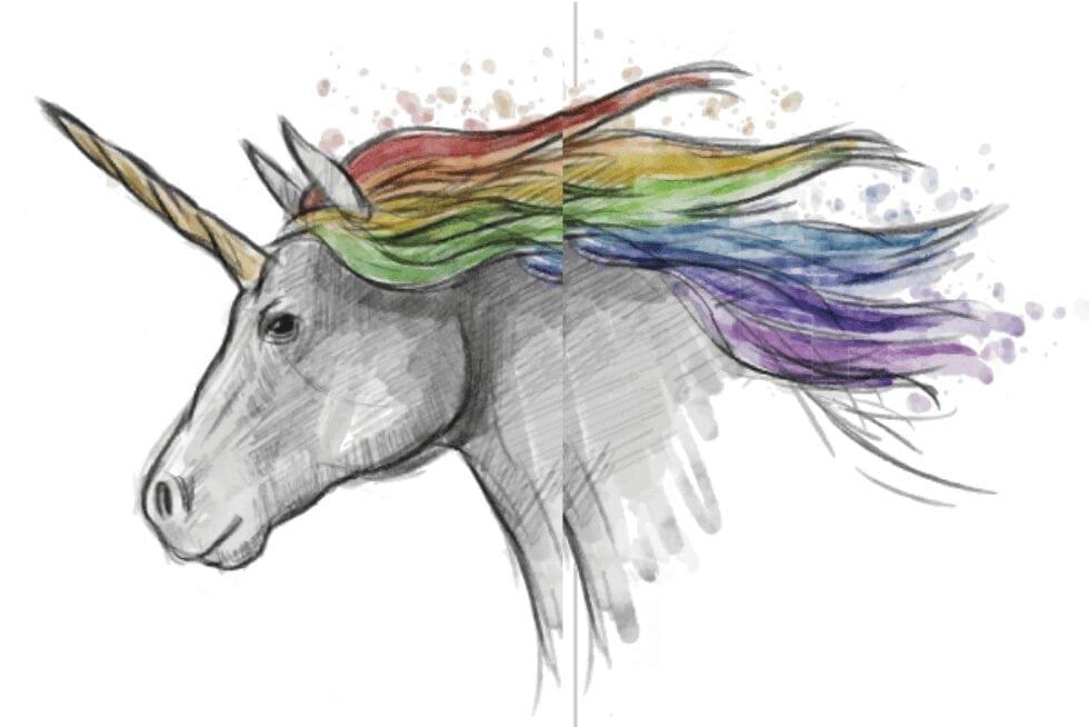 Zebras, camelos, dragões e unicórnios:  O ecossistema das startups