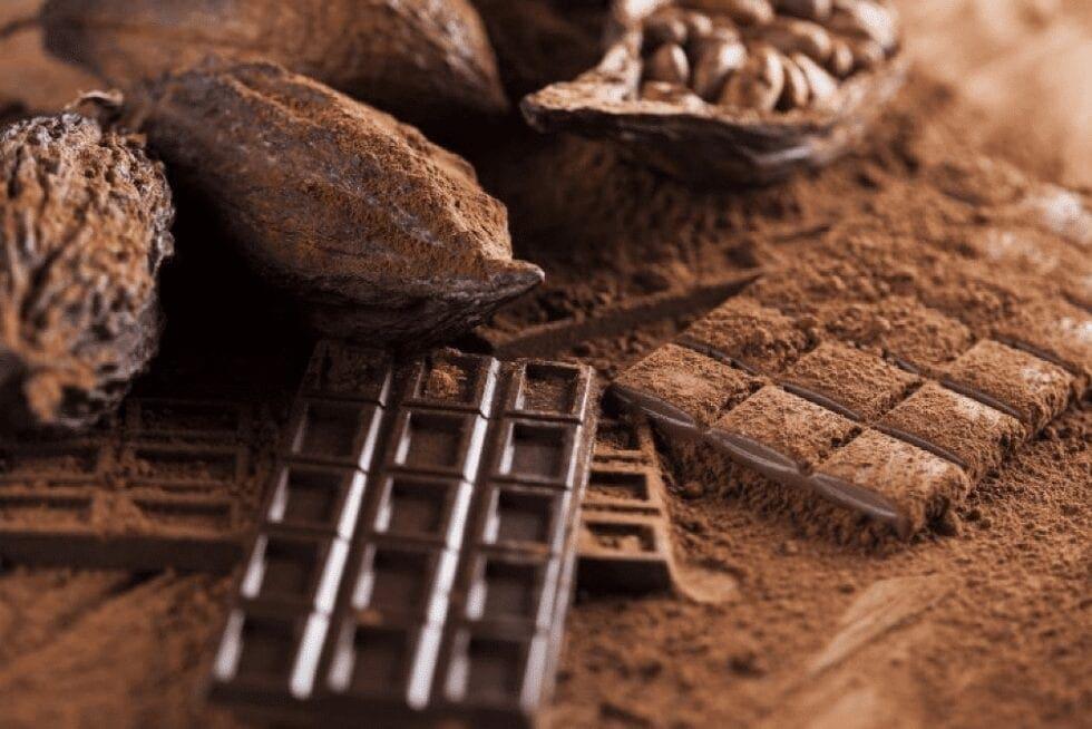 SAÚDE E SUSTENTABILIDADE NO ATO DE FAZER E COMER CHOCOLATE