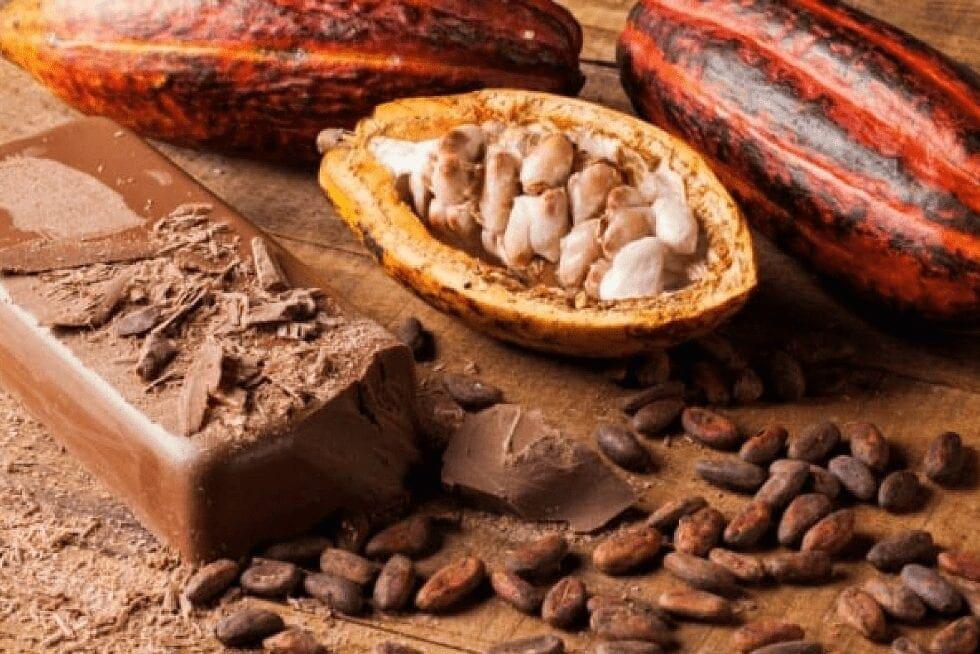 Chocolate Bean to Bar
